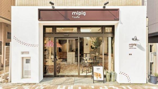 Cafe Pertama Di Jepang Yang Menghadirkan Babi Mungil Yang Menggemaskan