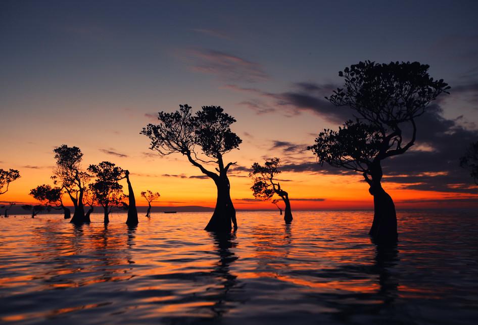 7 Pesona Keindahan Pulau Sumba